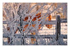 Hinter - dem Winter
