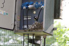 Hinter den Kulissen...im Vogelhaus mit Stromanschluß