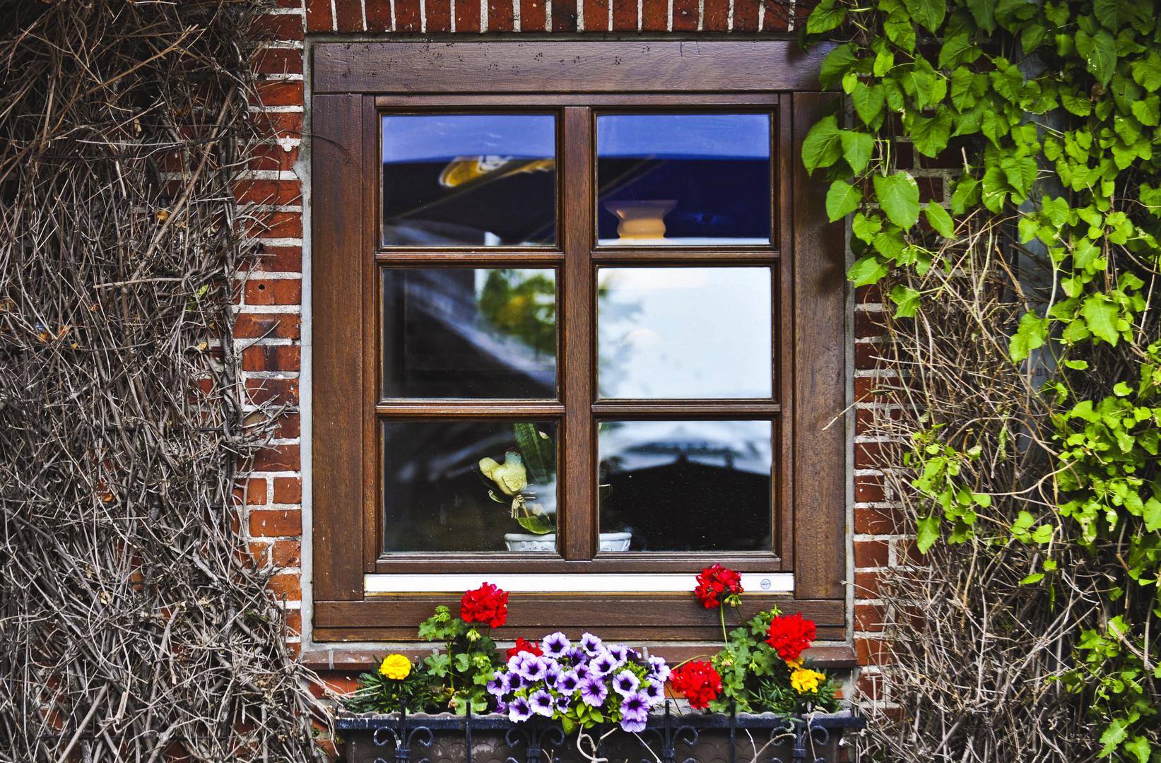Hinter diesem Fenster kann es nur Romantisch sein.
