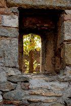 Hinter Mauern