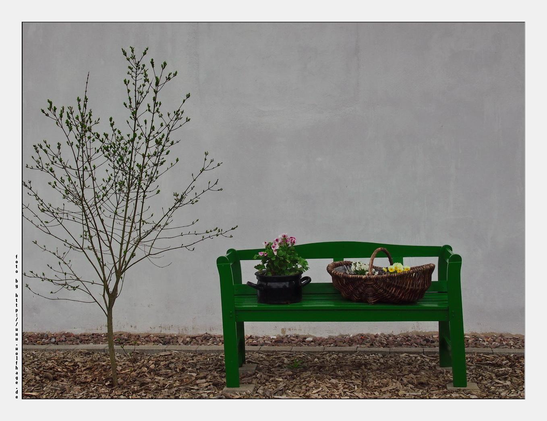 Hinterhof-Frühling