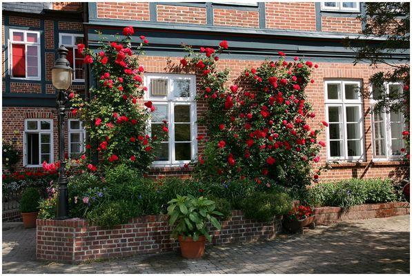 Hinterhof in Lüneburg