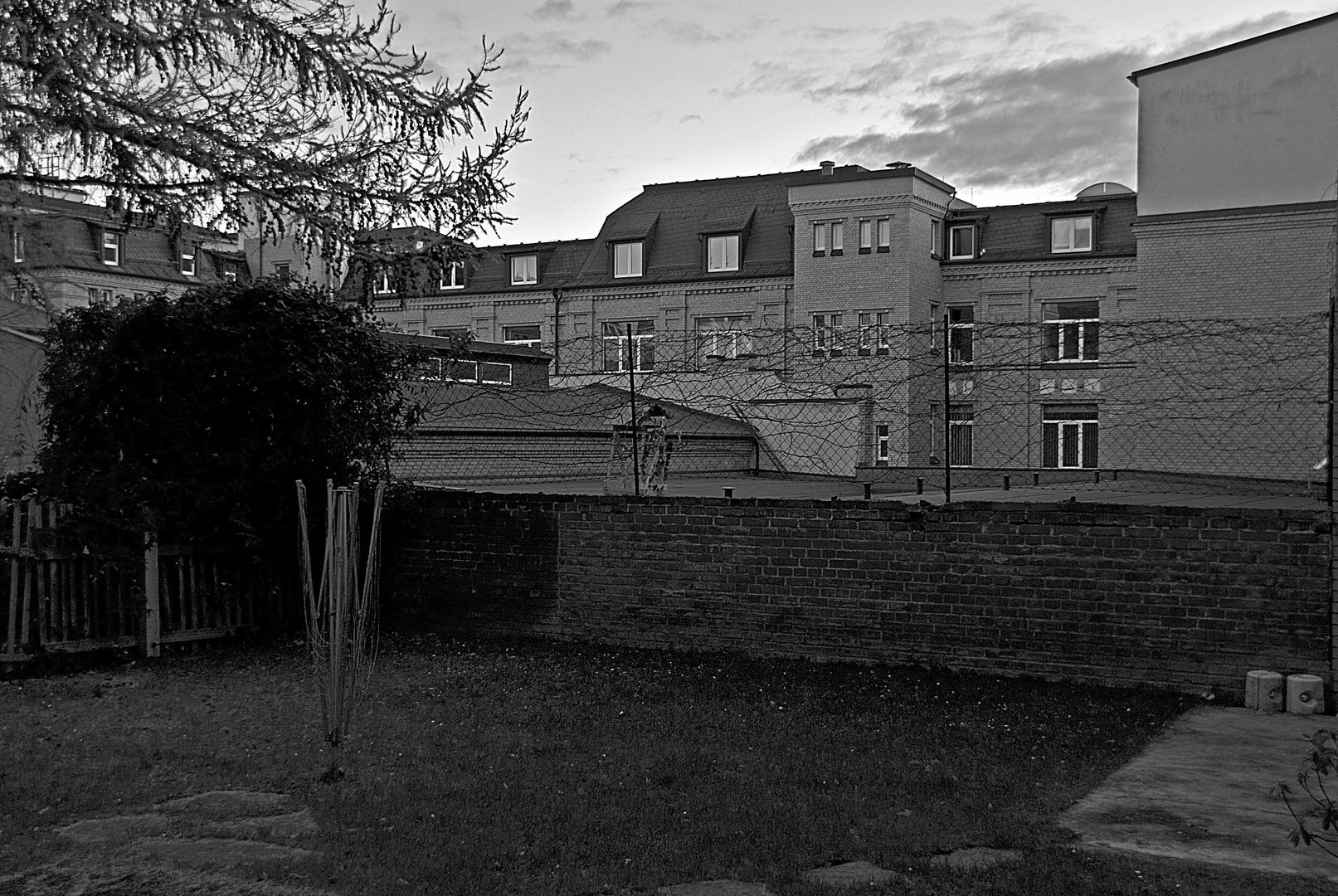 Hinterhof-Romantik