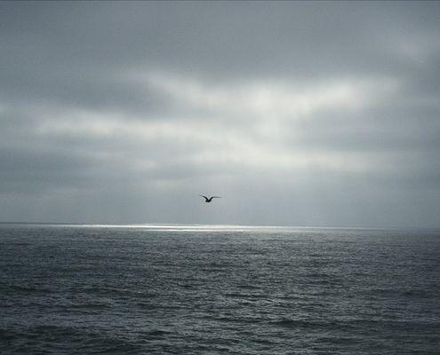 Hinterm Horizont geht s weiter...