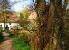 Hinxton mill