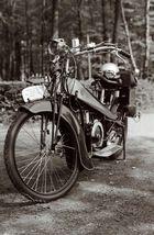 hirsch berlin -bauj. 1923