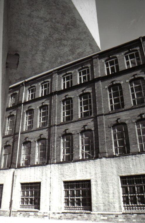 Hirsch in Gera
