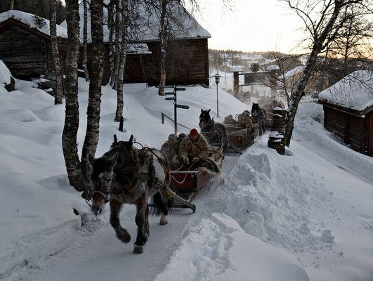 historische Pferdeschlittengruppe auf dem Weg zum Wintermarkt nach Röros
