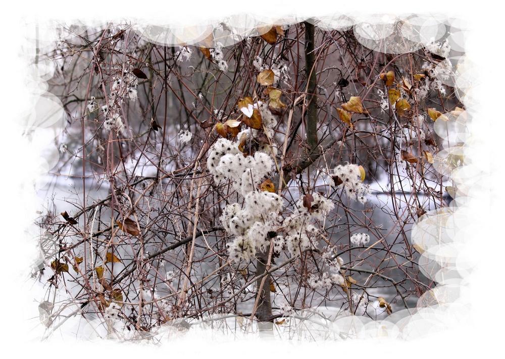 hiver!
