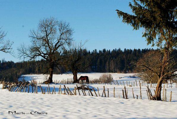 hiver dans le Ht Doubs