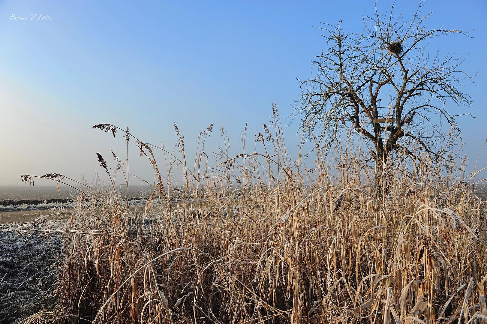hiver en rase campagne