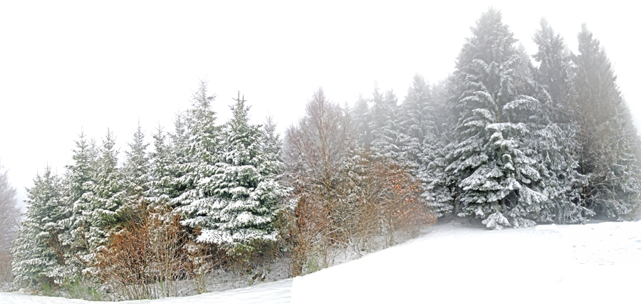 hiver I