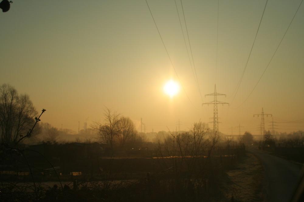 Hmmmmorning Sunshine