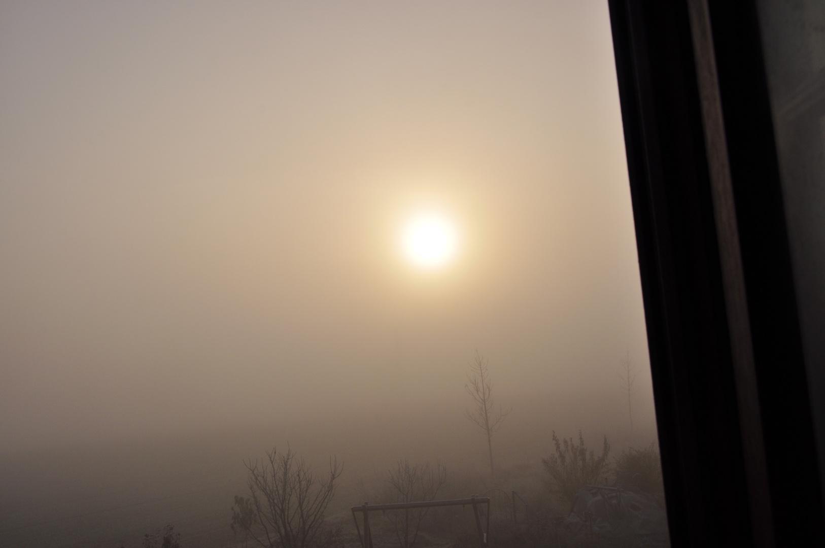 Hoary autumn morning