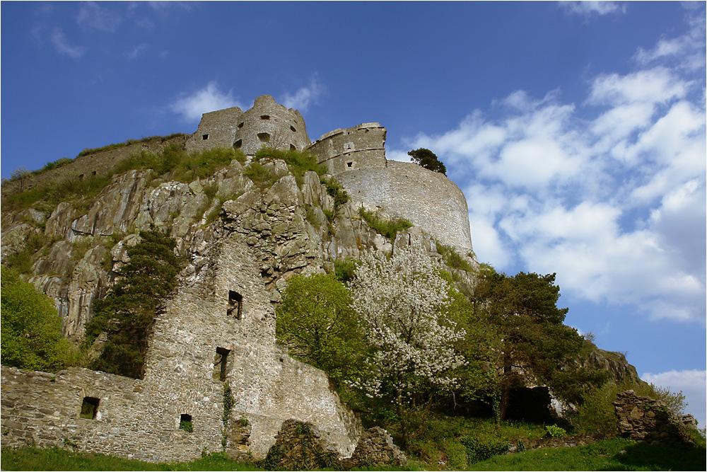 Hoch oben - Burg Hohentwiel