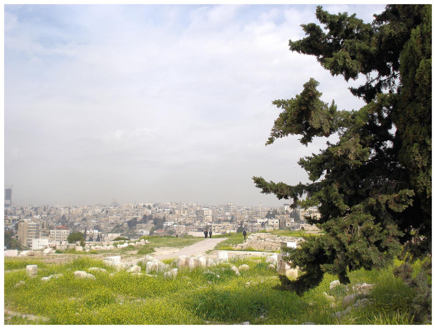 Hoch über Amman