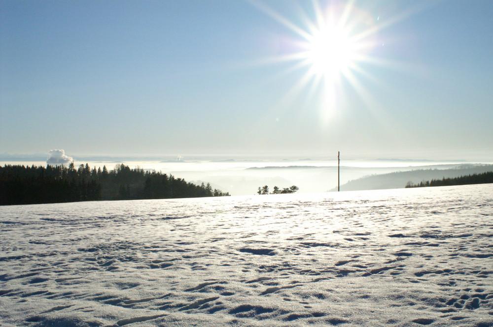 Hoch über dem Nebelmeer, endlich wieder einmal Sonne