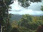 Hoch über den Bäumen von Cerns Australien