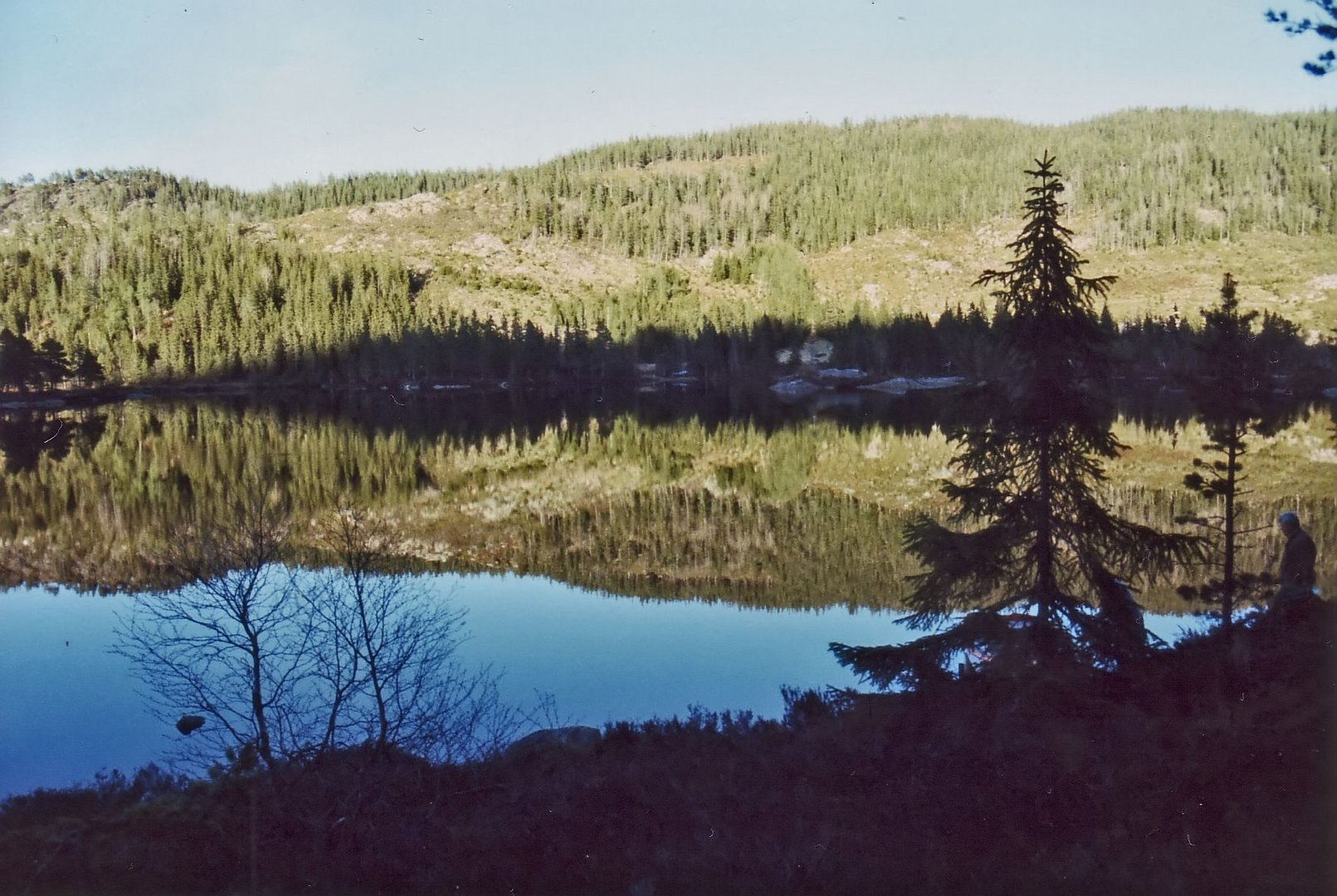 Hochgebirgssee (3)