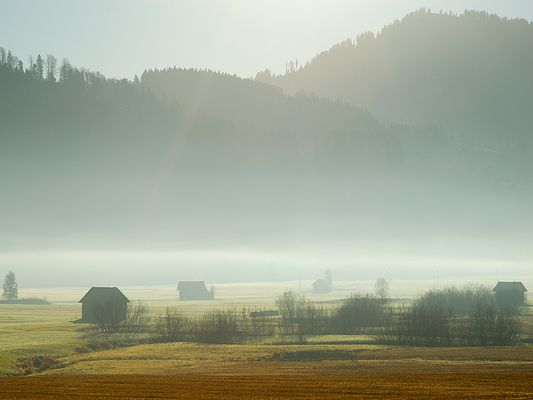 Hochmoor bei Rothenthurm SZ