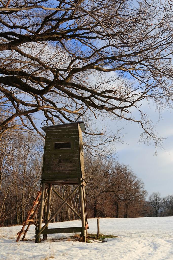 Hochstand bei Kittlitz (nahe Löbau)