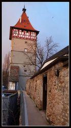 Hochwachturm vom Bau umgeben