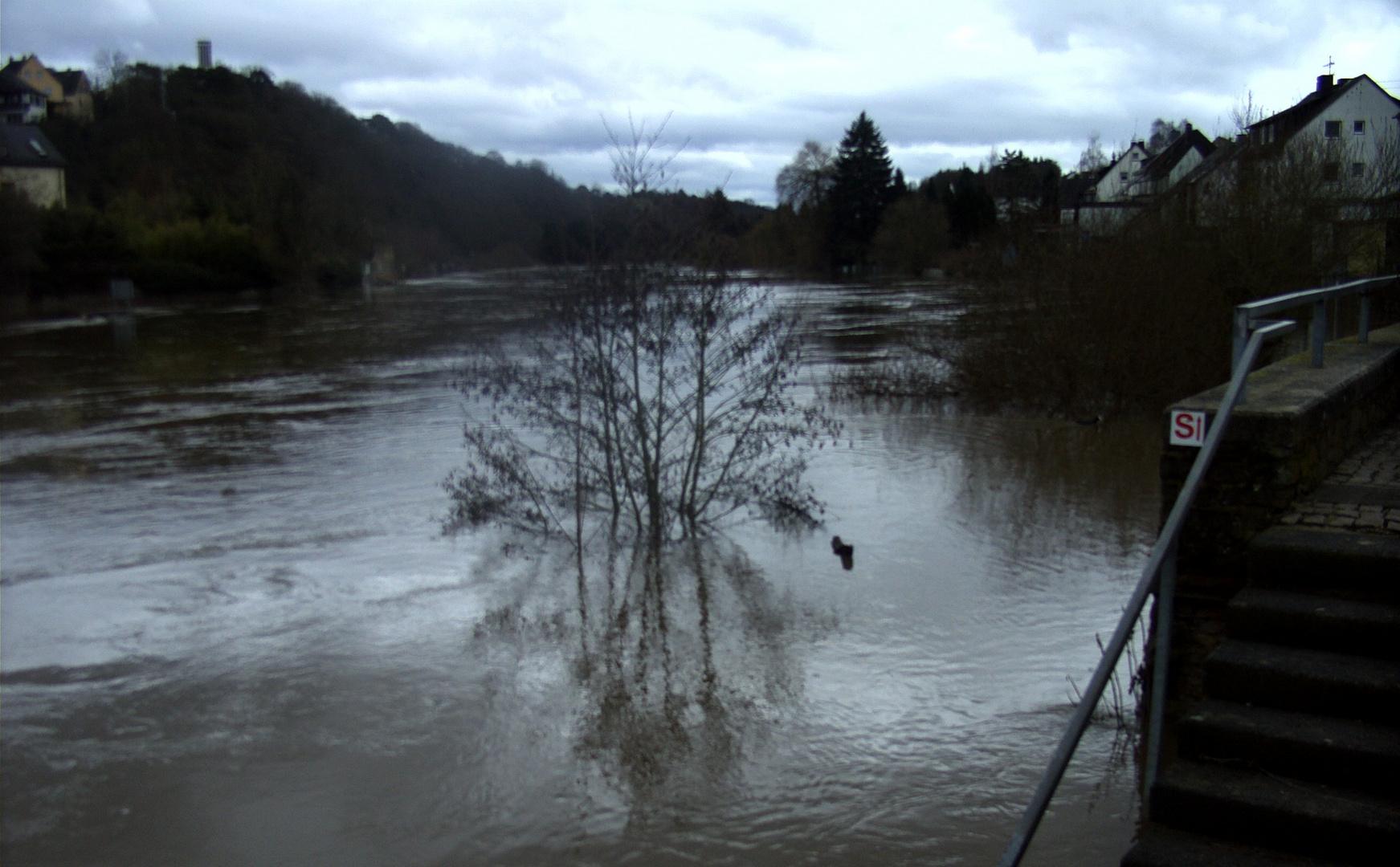 Hochwasser 2010 (2)