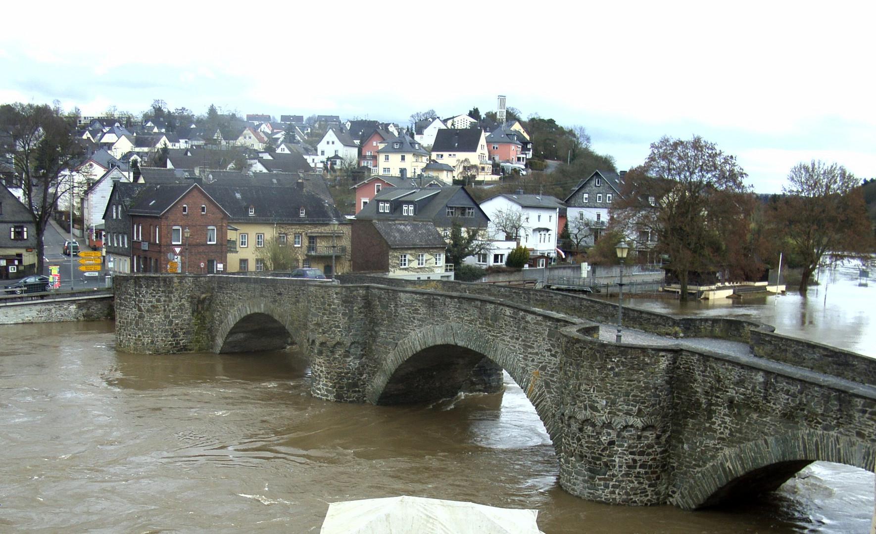 Hochwasser 2010 (3)