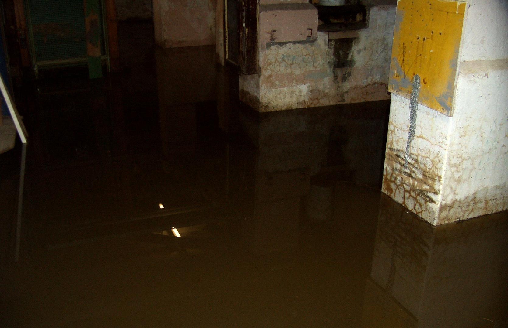 Hochwasser 2010 (4)