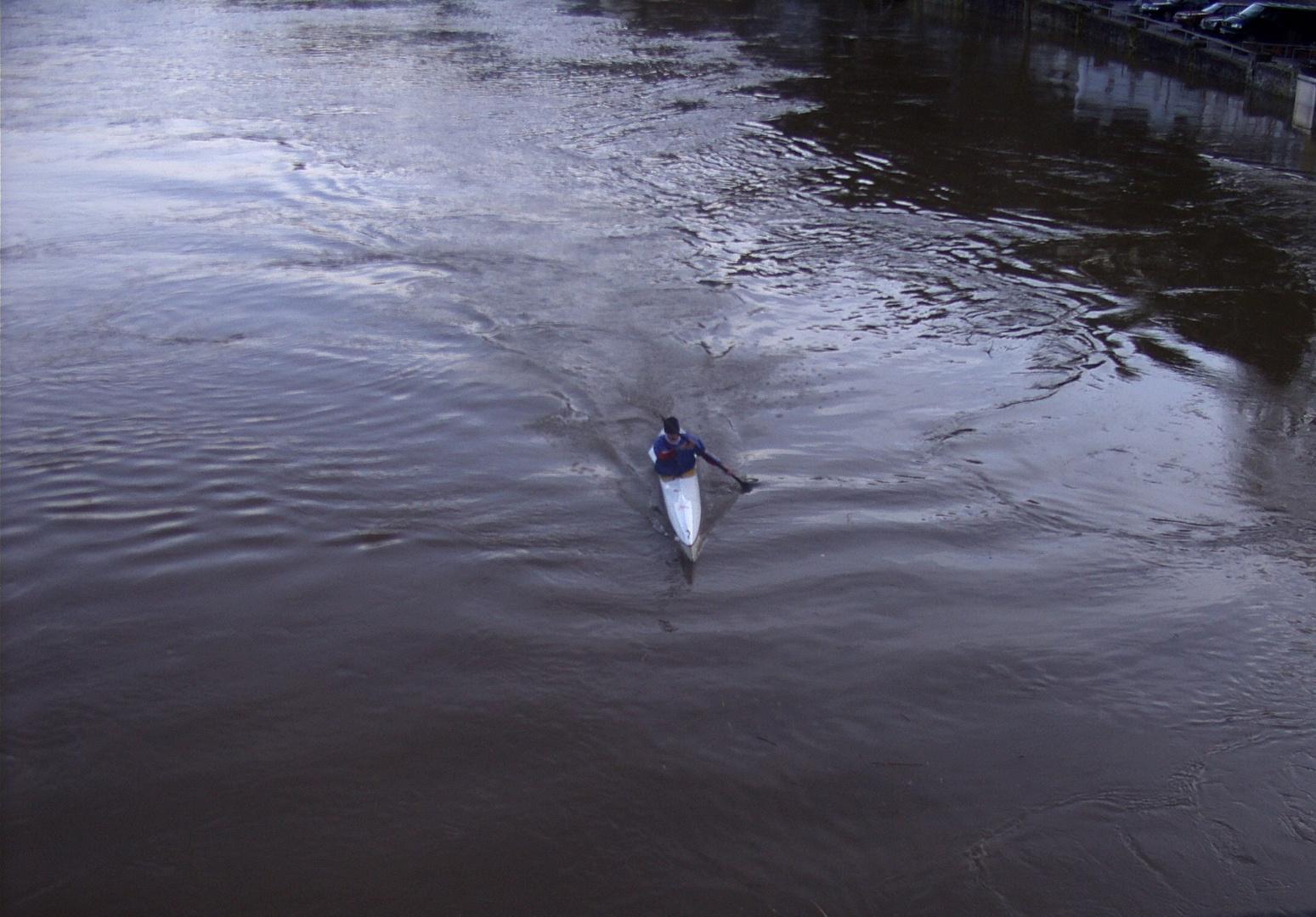 Hochwasser 2010 (5)