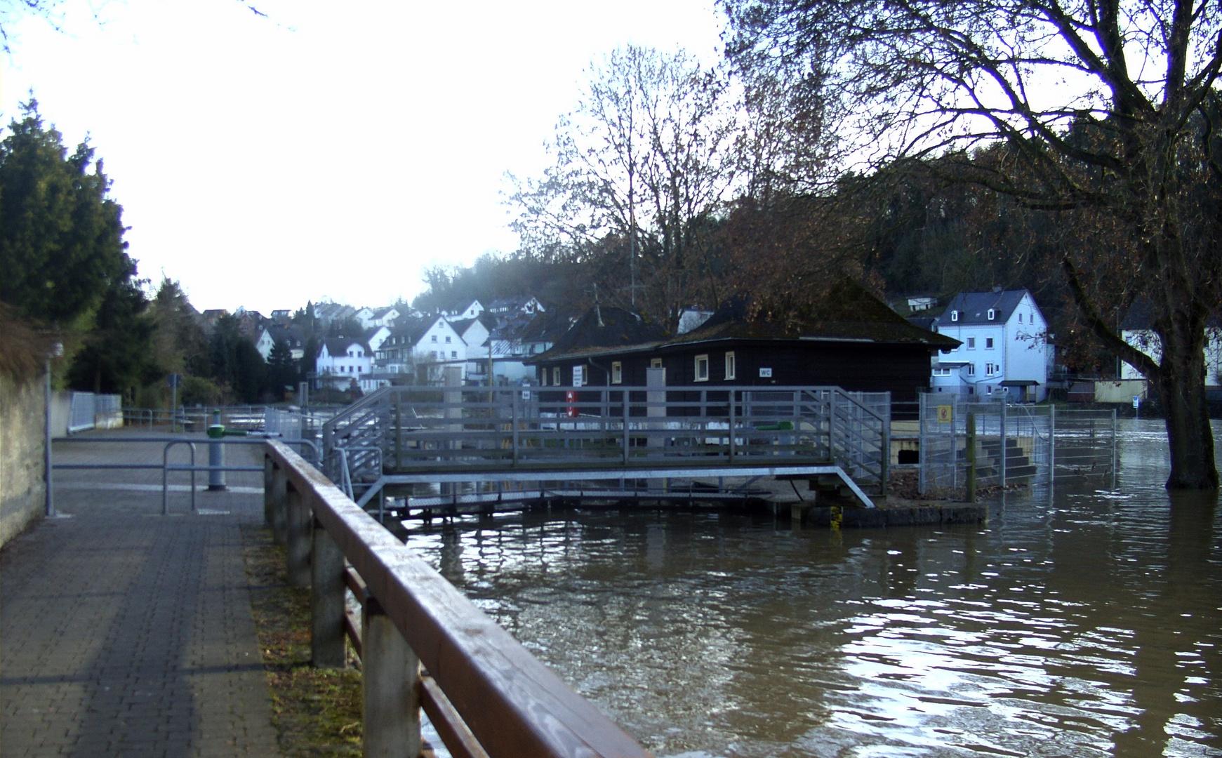 Hochwasser 2010 (7)