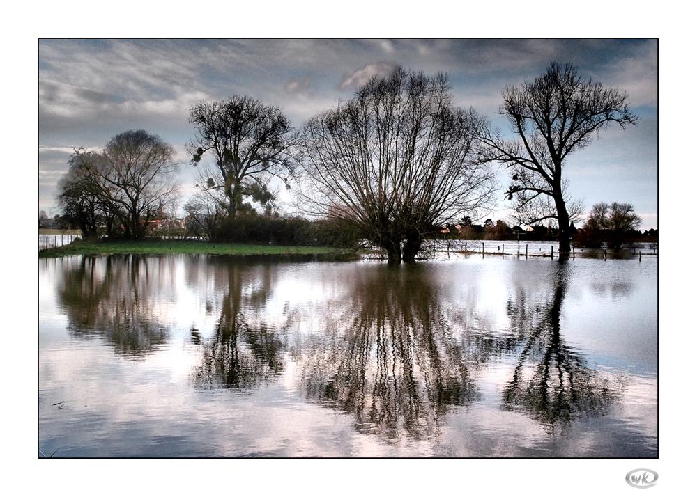 Hochwasser-Ästhetik