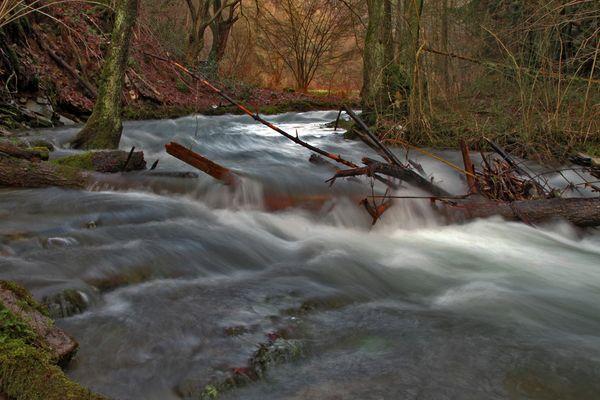 Hochwasser am Bach ...