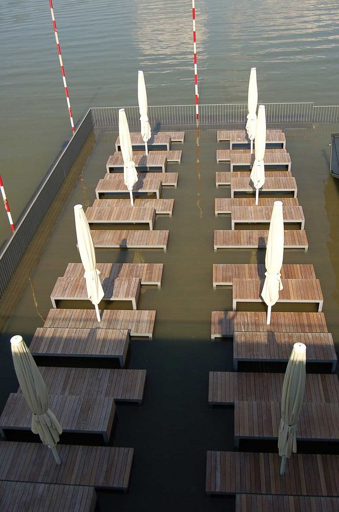 ***Hochwasser am Rhein***
