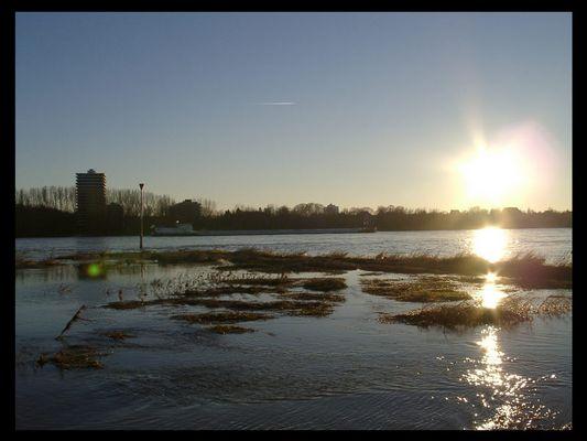 Hochwasser am Rheinufer