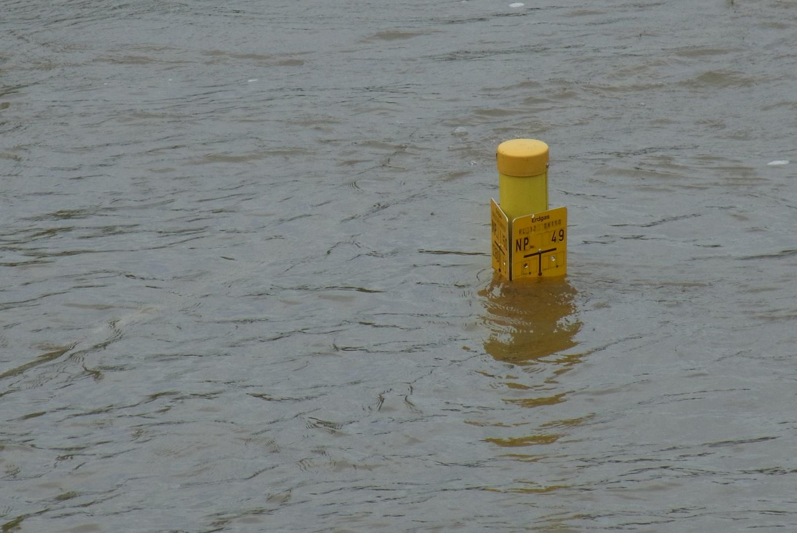 Hochwasser an der Werra bei Creuzburg 2013