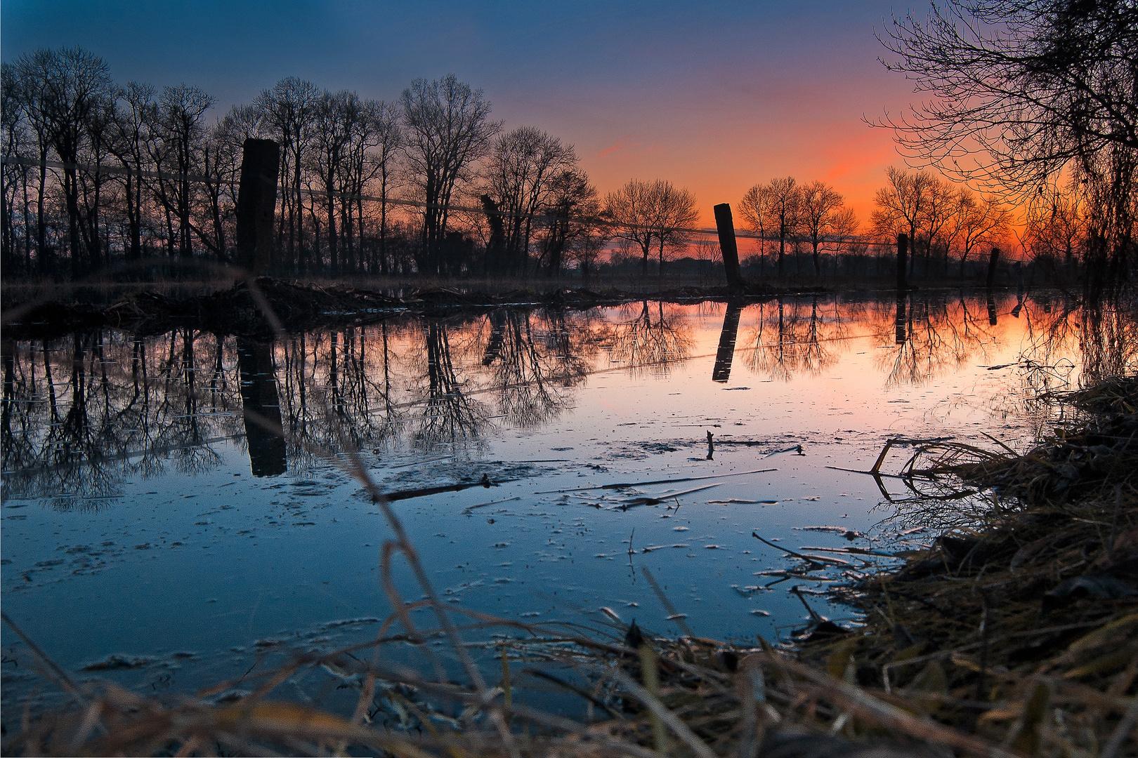 Hochwasser auf einer Weide