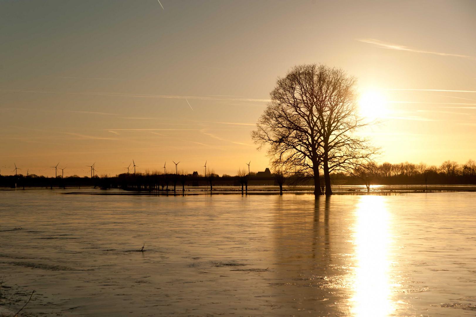 Hochwasser bei Rhede