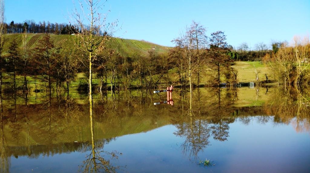 Hochwasser im Rückhaltebecken Eschenau_Landschaftsspiegelung