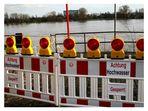 Hochwasser in Köln .....