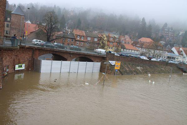 Hochwasser Miltenberg