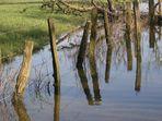 Hochwasserspiegel(ung) . . .