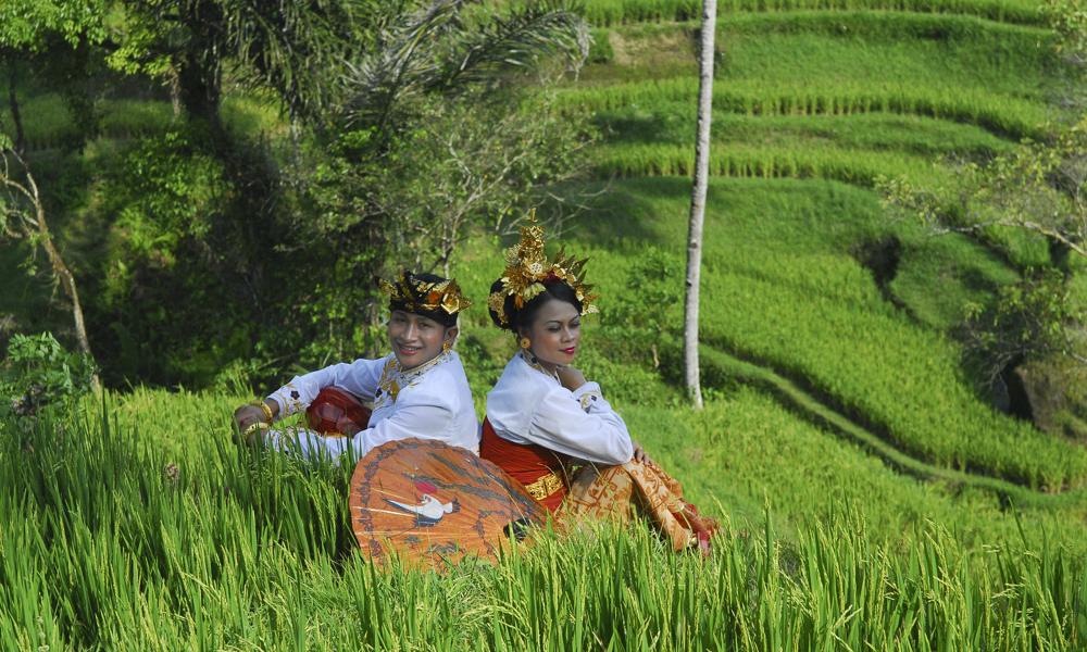 Hochzeit; Hochzeitspaar; Reisfeld; Balu; Indonesien