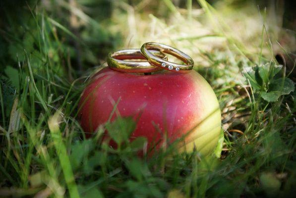 Hochzeit im August
