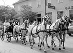 Hochzeit im Burgenland/Österreich........