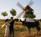 Hochzeit in La Mancha 2