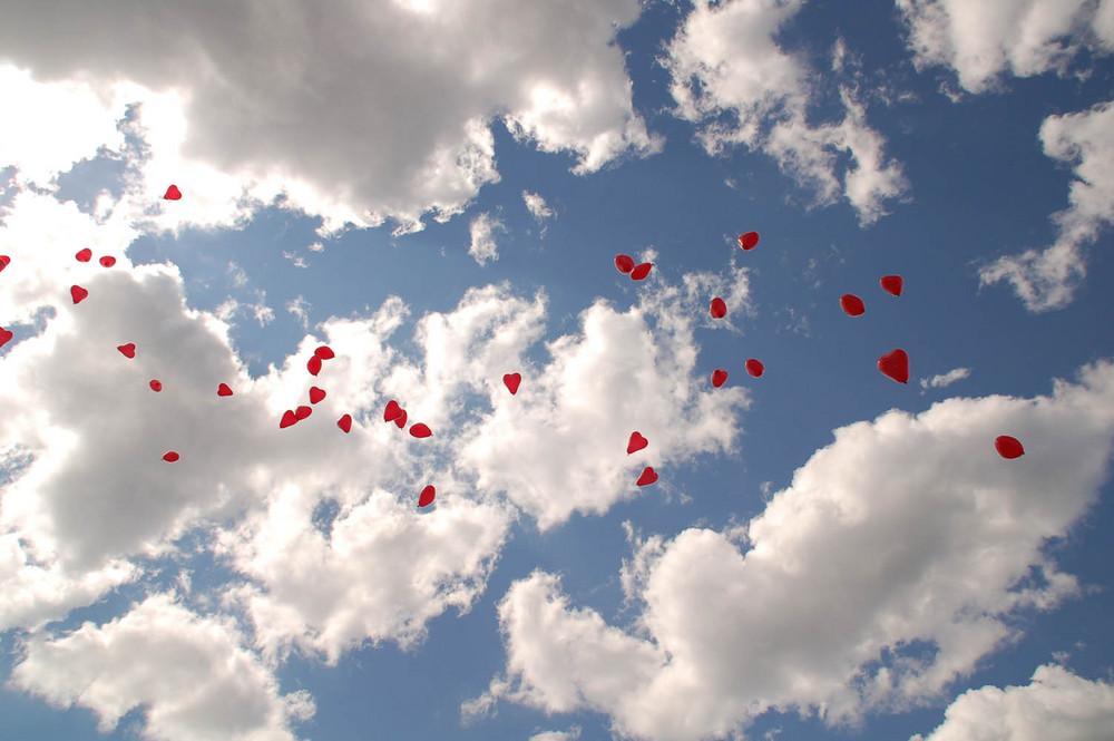 hochzeitsballons f r ein brautpaar foto bild gratulation und feiertage. Black Bedroom Furniture Sets. Home Design Ideas