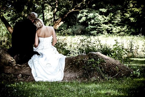 Hochzeitspaar sitzt verträumt auf einem Baumstamm