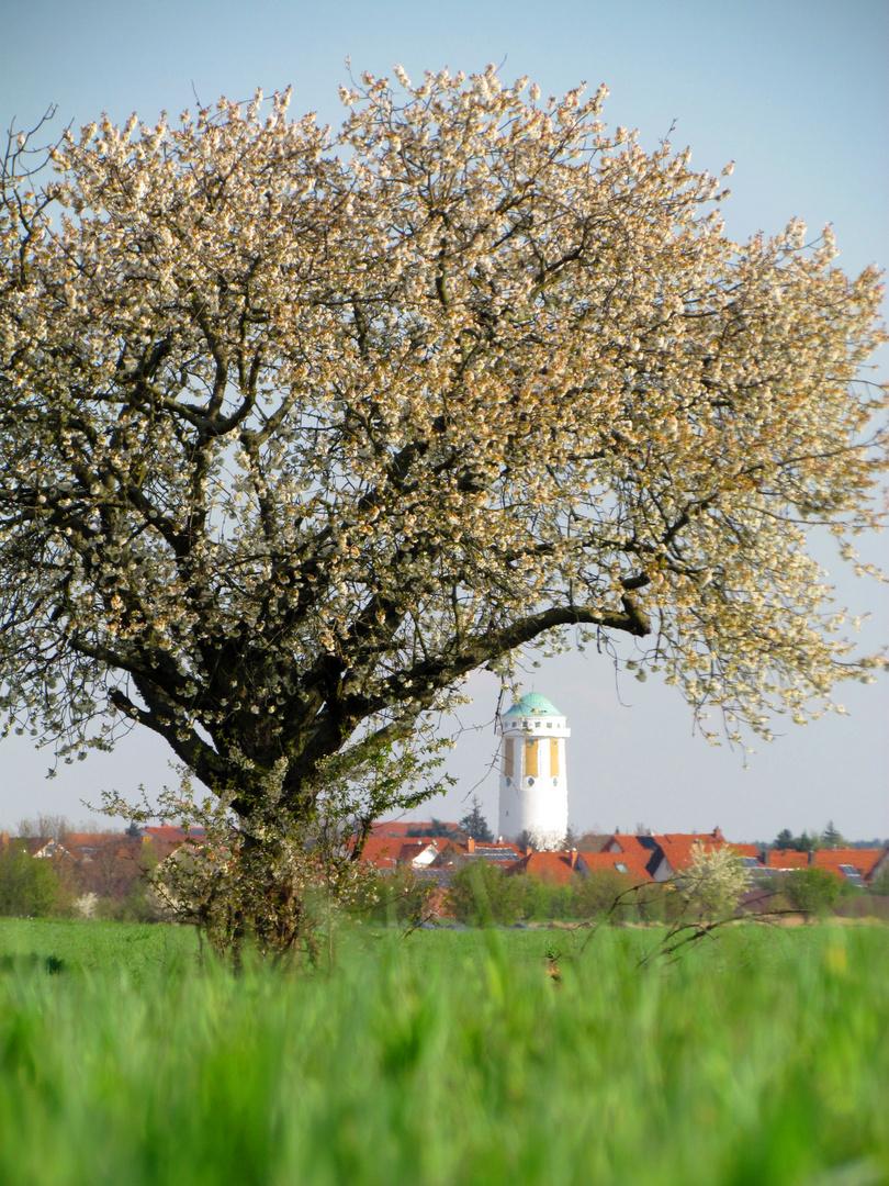 Hockenheim #002