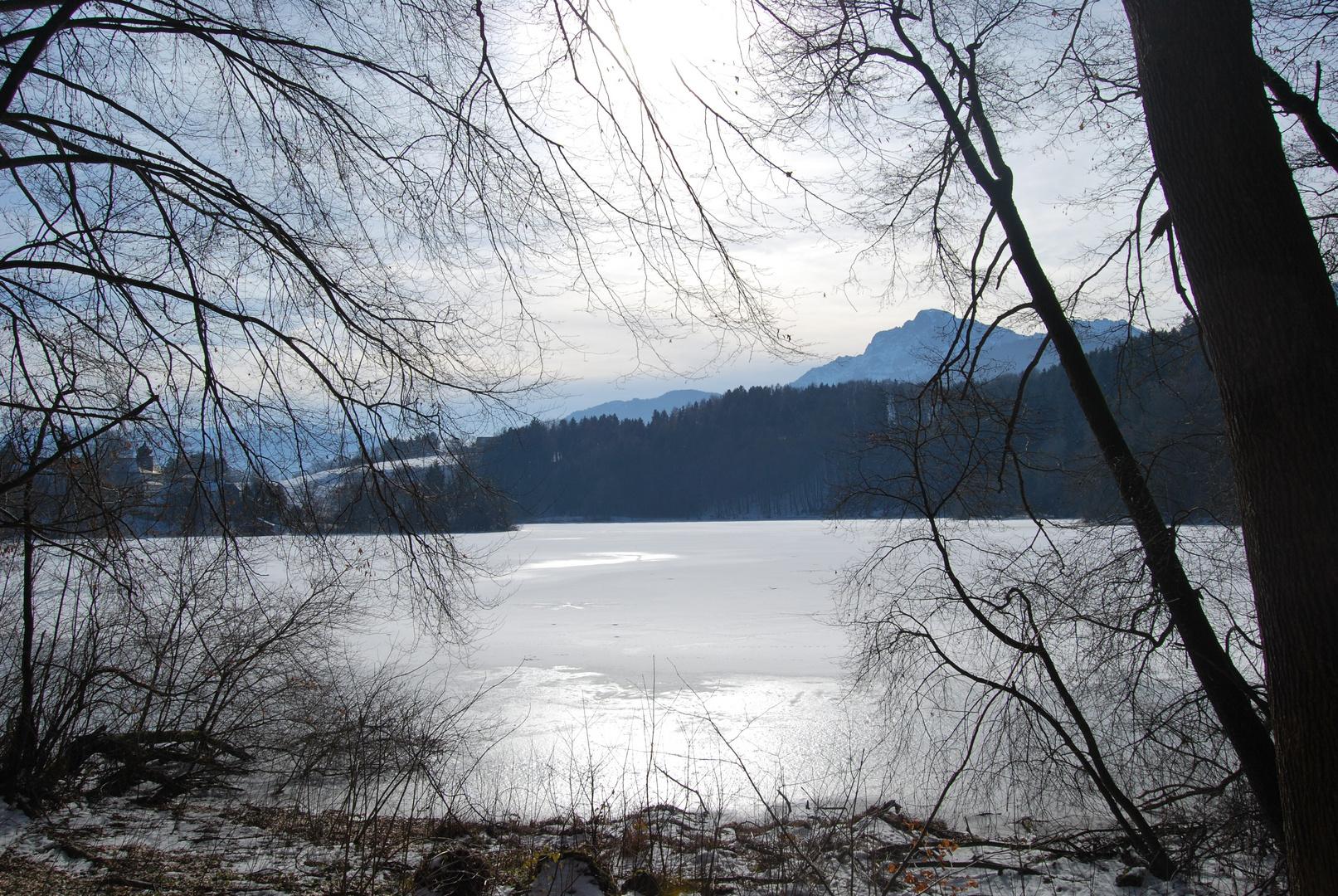 Höglwörther See